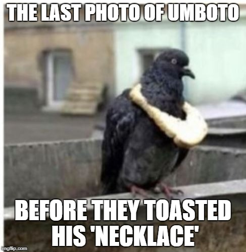 THE LAST PHOTO OF UMBOTO BEFORE THEY TOASTED HIS 'NECKLACE' | made w/ Imgflip meme maker