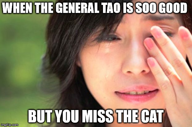 WHEN THE GENERAL TAO IS SOO GOOD BUT YOU MISS THE CAT | image tagged in crying asian girl | made w/ Imgflip meme maker