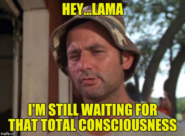 HEY...LAMA I'M STILL WAITING FOR THAT TOTAL CONSCIOUSNESS | made w/ Imgflip meme maker