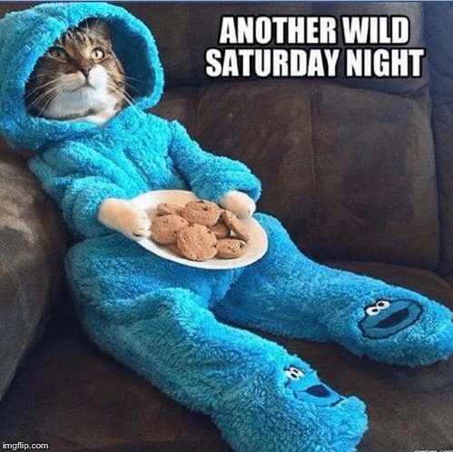 ANOTHER WILD SATURDAY NIGHT | image tagged in memes,saturday | made w/ Imgflip meme maker
