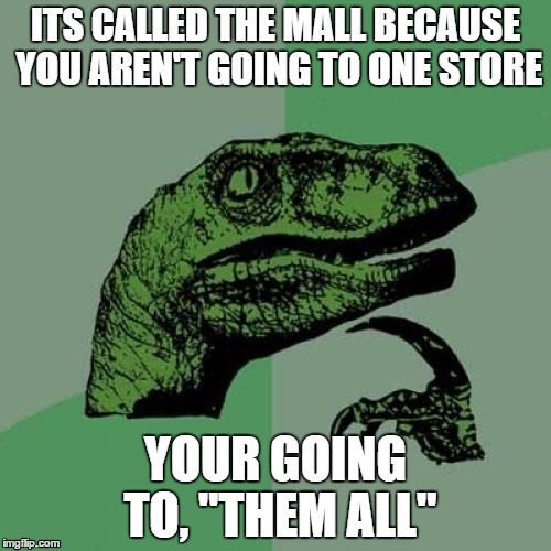 "The Mall... | ITS CALLED THE MALL BECAUSE YOU AREN'T GOING TO ONE STORE YOUR GOING TO, ""THEM ALL"" 