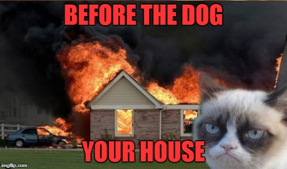 BEFORE THE DOG YOUR HOUSE | made w/ Imgflip meme maker