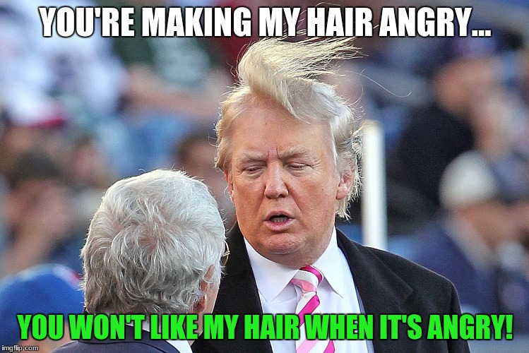 Donald Trump's Hair | YOU'RE MAKING MY HAIR ANGRY... YOU WON'T LIKE MY HAIR WHEN IT'S ANGRY! | image tagged in hulk,donald trump,donald trumph hair,bad hair day,incredible hulk,president trump | made w/ Imgflip meme maker