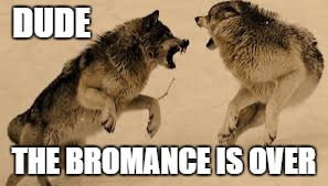 DUDE THE BROMANCE IS OVER | image tagged in sirchillsalot | made w/ Imgflip meme maker