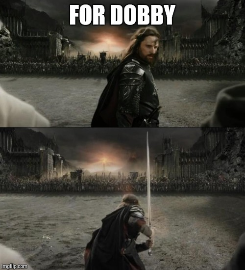 Deathly Hallow feels | FOR DOBBY | image tagged in aragorn in battle,harry potter,dobby | made w/ Imgflip meme maker