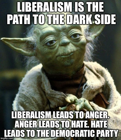 Star Wars Yoda Meme | LIBERALISM IS THE PATH TO THE DARK SIDE LIBERALISM LEADS TO ANGER. ANGER LEADS TO HATE. HATE LEADS TO THE DEMOCRATIC PARTY | image tagged in memes,star wars yoda | made w/ Imgflip meme maker