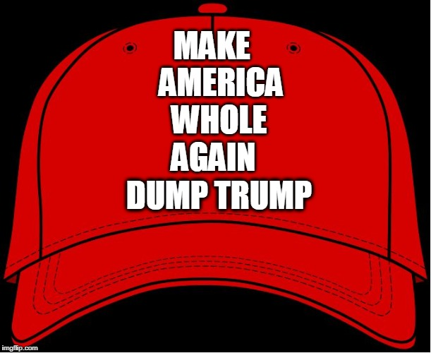 Red Hat | MAKE                            AMERICA WHOLE AGAIN DUMP TRUMP | image tagged in red hat | made w/ Imgflip meme maker