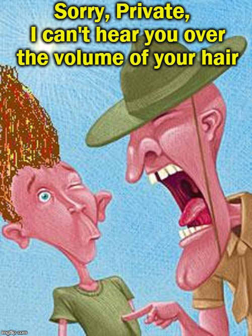 Saving Private's Privates | Sorry, Private,  I can't hear you over the volume of your hair | image tagged in vince vance,drill sergeant,boot camp,you're in the army now,gunnery sargeant,full metal jacket | made w/ Imgflip meme maker