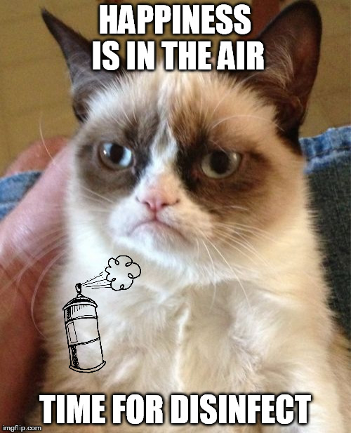 Grumpy Cat Meme | HAPPINESS IS IN THE AIR TIME FOR DISINFECT | image tagged in memes,grumpy cat | made w/ Imgflip meme maker