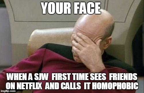 stupid morons SJW | YOUR FACE WHEN A SJW  FIRST TIME SEES  FRIENDS ON NETFLIX  AND CALLS  IT HOMOPHOBIC | image tagged in memes,captain picard facepalm | made w/ Imgflip meme maker