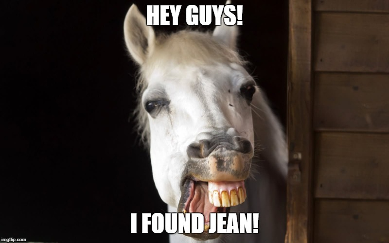 HEY GUYS! I FOUND JEAN! | image tagged in horseface | made w/ Imgflip meme maker