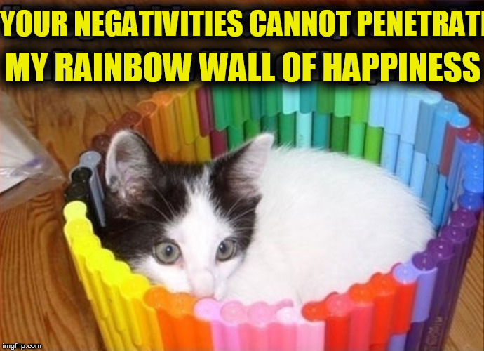 YOUR NEGATIVITIES CANNOT PENETRATE MY RAINBOW WALL OF HAPPINESS | made w/ Imgflip meme maker