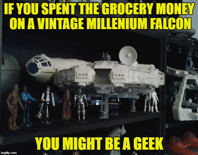 Starwars Collectors Understand-, Geek Week Jan 7-13, a JBmemegeek & KenJ event | IF YOU SPENT THE GROCERY MONEY ON A VINTAGE MILLENIUM FALCON YOU MIGHT BE A GEEK | image tagged in meme,starwars,toy collector,geek week | made w/ Imgflip meme maker