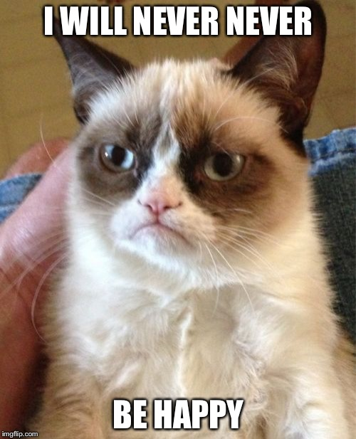 Grumpy Cat Meme | I WILL NEVER NEVER BE HAPPY | image tagged in memes,grumpy cat | made w/ Imgflip meme maker