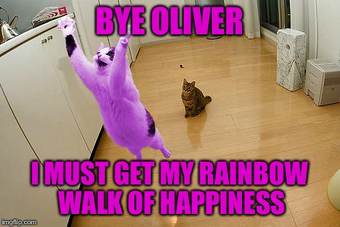 RayCat save the world | BYE OLIVER I MUST GET MY RAINBOW WALK OF HAPPINESS | image tagged in raycat save the world | made w/ Imgflip meme maker