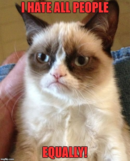 Grumpy Cat Meme | I HATE ALL PEOPLE EQUALLY! | image tagged in memes,grumpy cat | made w/ Imgflip meme maker