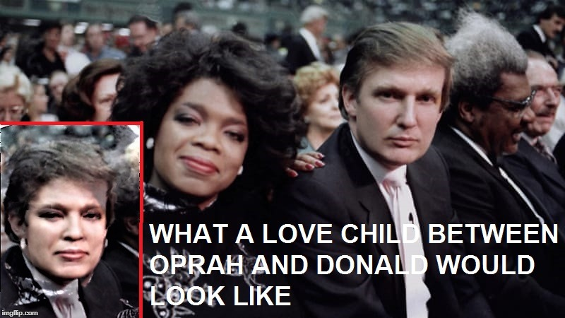 Love knows no political boundries | image tagged in oprah,trump,donald trump,oprah winfrey,love child,mashup | made w/ Imgflip meme maker