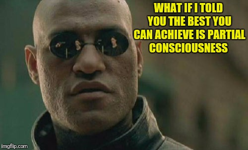 Matrix Morpheus Meme | WHAT IF I TOLD YOU THE BEST YOU CAN ACHIEVE IS PARTIAL CONSCIOUSNESS | image tagged in memes,matrix morpheus | made w/ Imgflip meme maker