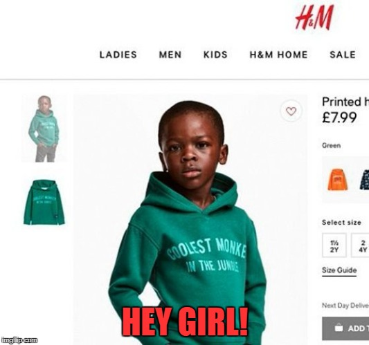 h&m coolest monkey | HEY GIRL! | image tagged in hm coolest monkey | made w/ Imgflip meme maker