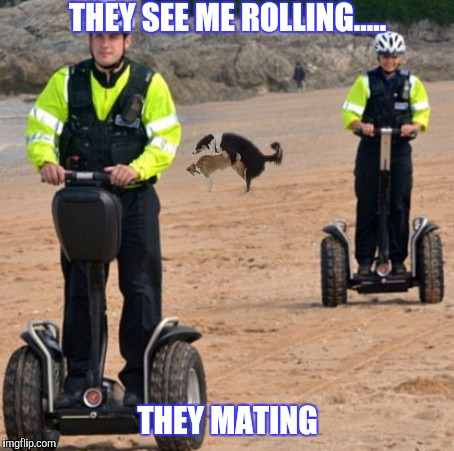 Durrrttyyyy | THEY SEE ME ROLLING..... THEY MATING | image tagged in riding,dirty,segway,funny | made w/ Imgflip meme maker
