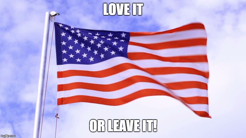 USA Flag | LOVE IT OR LEAVE IT! | image tagged in usa flag | made w/ Imgflip meme maker