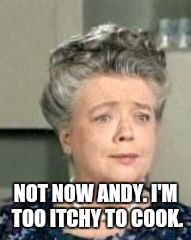 NOT NOW ANDY. I'M TOO ITCHY TO COOK. | made w/ Imgflip meme maker