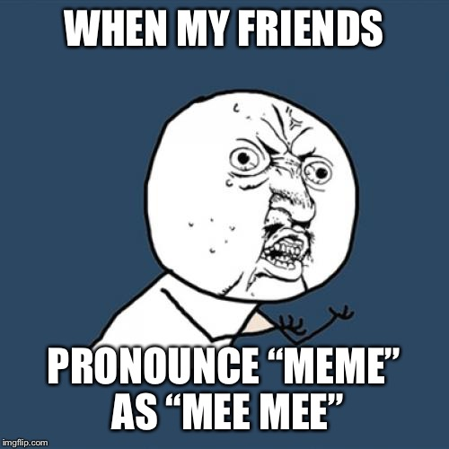 "Y U No Meme | WHEN MY FRIENDS PRONOUNCE ""MEME"" AS ""MEE MEE"" 