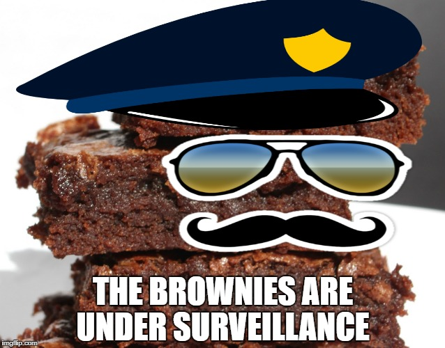 THE BROWNIES ARE UNDER SURVEILLANCE | made w/ Imgflip meme maker