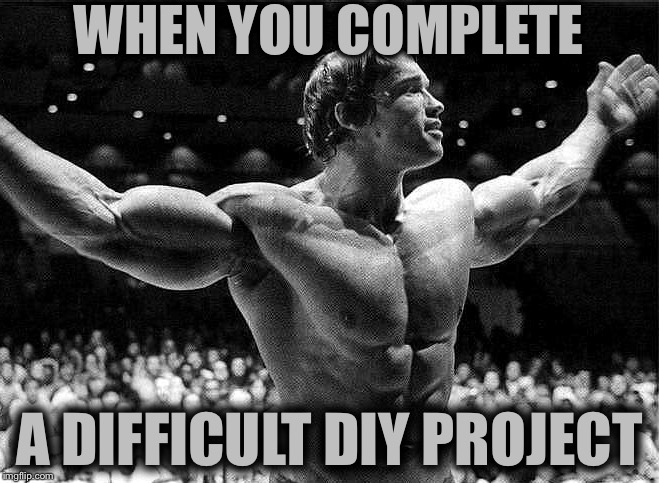 WHEN YOU COMPLETE A DIFFICULT DIY PROJECT | image tagged in memes,so true,arnold schwarzenegger,diy | made w/ Imgflip meme maker