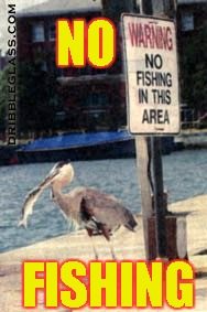 NO FISHING | NO FISHING | image tagged in memes,bird,fish,no fishing,sign | made w/ Imgflip meme maker