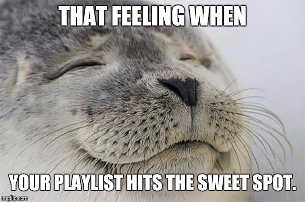 Satisfied Seal Meme | THAT FEELING WHEN YOUR PLAYLIST HITS THE SWEET SPOT. | image tagged in memes,satisfied seal | made w/ Imgflip meme maker
