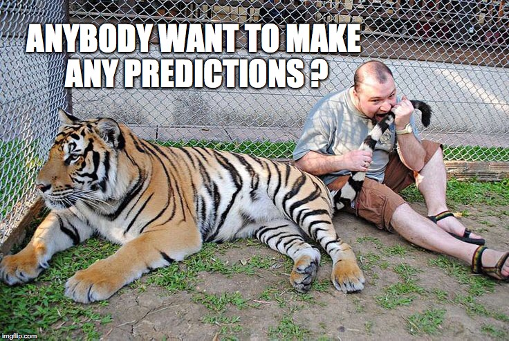 My money is on the Tiger | ANYBODY WANT TO MAKE ANY PREDICTIONS ? | image tagged in tiger,jackass,darwin award,one does not simply,memes | made w/ Imgflip meme maker