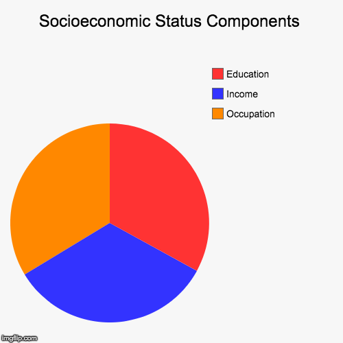 | Socioeconomic Status Components | Occupation, Income, Education | image tagged in funny,pie charts | made w/ Imgflip chart maker