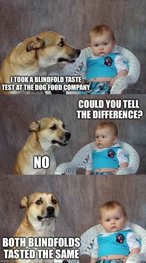 Dad Joke Dog Meme | I TOOK A BLINDFOLD TASTE TEST AT THE DOG FOOD COMPANY COULD YOU TELL THE DIFFERENCE? NO BOTH BLINDFOLDS TASTED THE SAME | image tagged in memes,dad joke dog | made w/ Imgflip meme maker