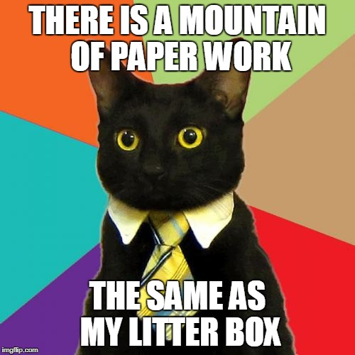 Business Cat Meme | THERE IS A MOUNTAIN OF PAPER WORK THE SAME AS MY LITTER BOX | image tagged in memes,business cat | made w/ Imgflip meme maker