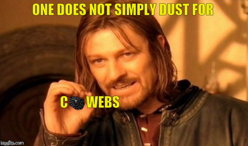 ONE DOES NOT SIMPLY DUST FOR C       WEBS | made w/ Imgflip meme maker