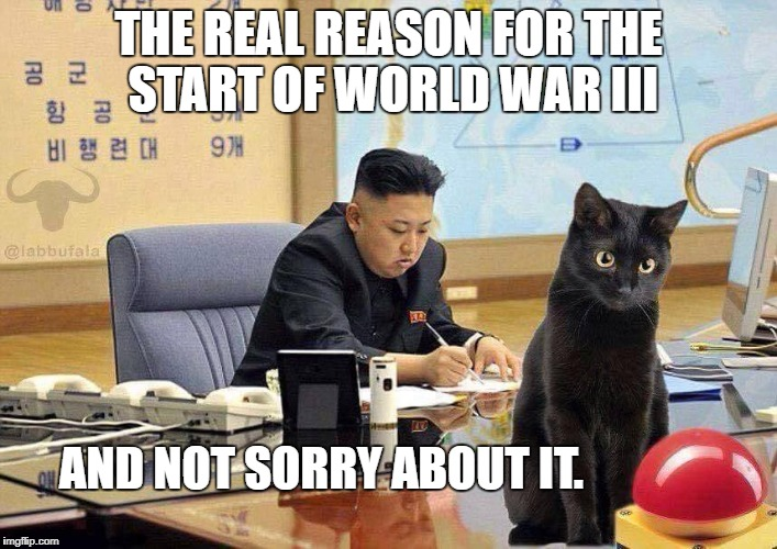 Cat started WW III | THE REAL REASON FOR THE START OF WORLD WAR III AND NOT SORRY ABOUT IT. | image tagged in cats,funny,kim jong un | made w/ Imgflip meme maker