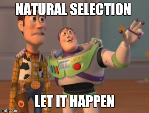 Natural Selection  | NATURAL SELECTION LET IT HAPPEN | image tagged in memes,x,x everywhere,x x everywhere,natural selection | made w/ Imgflip meme maker