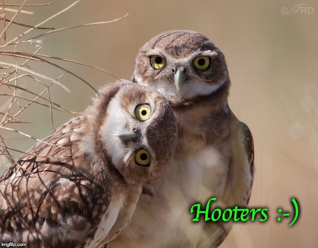 Hooters :-) | made w/ Imgflip meme maker