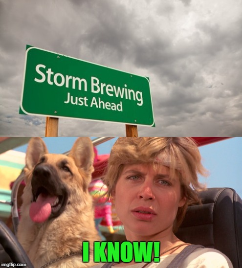 How did the sign know? A Cyberdyne product? | I KNOW! | image tagged in terminator,linda hamilton,sarah connor,cyberdyne,sign,dog | made w/ Imgflip meme maker