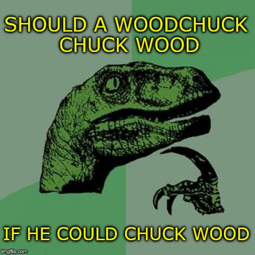 What if he hit someone, or broke a window? | SHOULD A WOODCHUCK CHUCK WOOD IF HE COULD CHUCK WOOD | image tagged in memes,philosoraptor | made w/ Imgflip meme maker