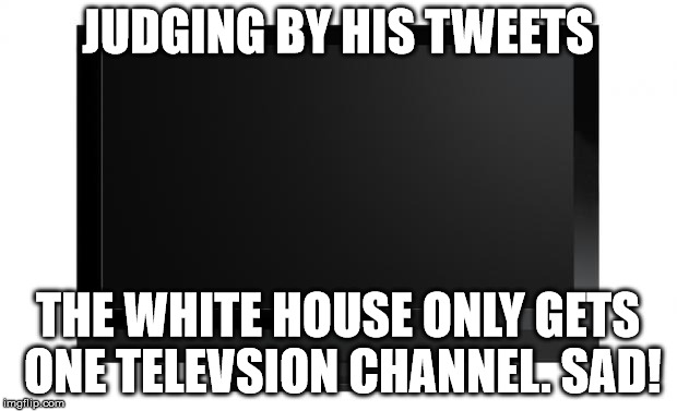 Television | JUDGING BY HIS TWEETS THE WHITE HOUSE ONLY GETS ONE TELEVSION CHANNEL. SAD! | image tagged in television | made w/ Imgflip meme maker