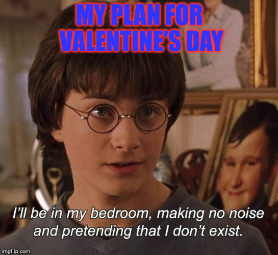 Hehe | MY PLAN FOR VALENTINE'S DAY | image tagged in harry potter,valentine's day,bachelor | made w/ Imgflip meme maker