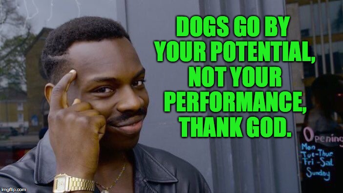 Roll Safe Think About It Meme | DOGS GO BY YOUR POTENTIAL, NOT YOUR PERFORMANCE, THANK GOD. | image tagged in memes,roll safe think about it | made w/ Imgflip meme maker