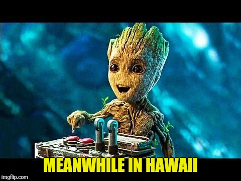 The Cause Revealed |  MEANWHILE IN HAWAII | image tagged in hawaii,false,alarm,baby groot,guardians of the galaxy | made w/ Imgflip meme maker