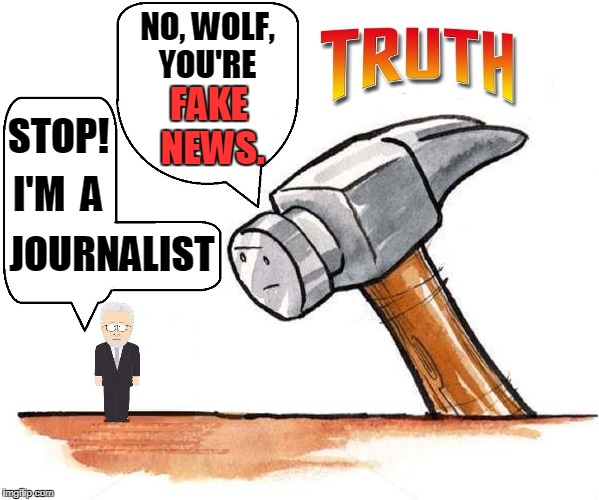 Hammer Time! | STOP! JOURNALIST I'M  A NO, WOLF, YOU'RE FAKE NEWS. | image tagged in vince vance,wolf blitzer,cnn,fake news,hammer time,hammer of truth | made w/ Imgflip meme maker