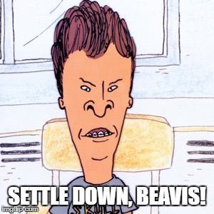SETTLE DOWN, BEAVIS! | made w/ Imgflip meme maker