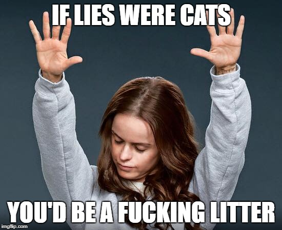 Just don't lie | IF LIES WERE CATS YOU'D BE A F**KING LITTER | image tagged in memes,funny meme | made w/ Imgflip meme maker