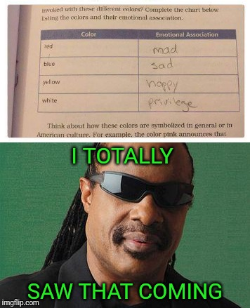 Racism indoctrination | I TOTALLY SAW THAT COMING | image tagged in white privilege,stevie wonder | made w/ Imgflip meme maker