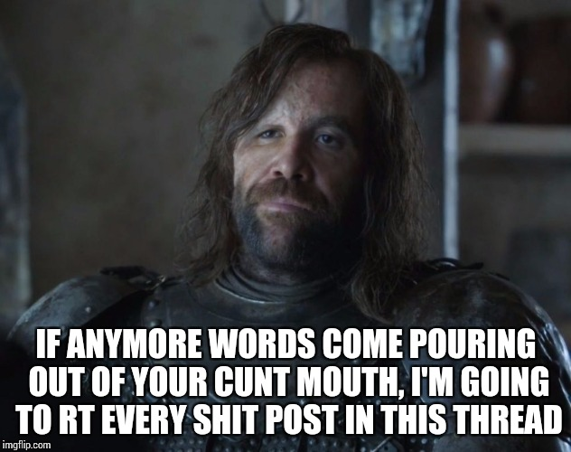 Whenever a Sally Kohn tweet crosses my timeline | IF ANYMORE WORDS COME POURING OUT OF YOUR C**T MOUTH, I'M GOING TO RT EVERY SHIT POST IN THIS THREAD | image tagged in the hound clegane,nsfw | made w/ Imgflip meme maker